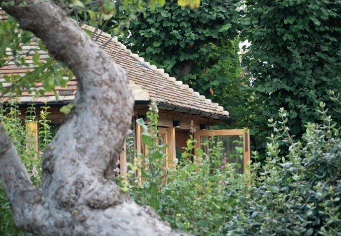 Oak framed orangery nestled in trees